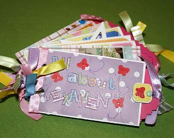 All about Exaiven Mini Scrapbook