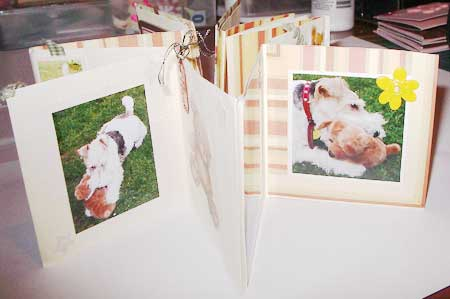 my  dog mini scrapbook