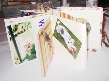 make a dog mini album scrapbook pages
