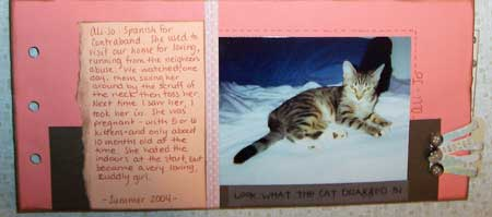 adoption cat mini book inner pages
