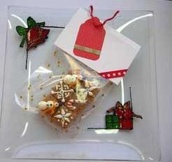 Christmas Sugar Cubes gift idea