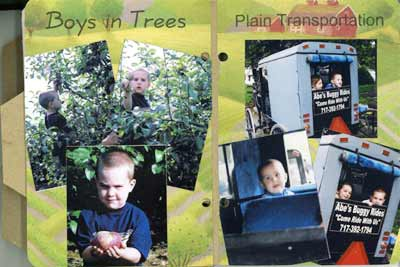zachs mini album - boys in trees